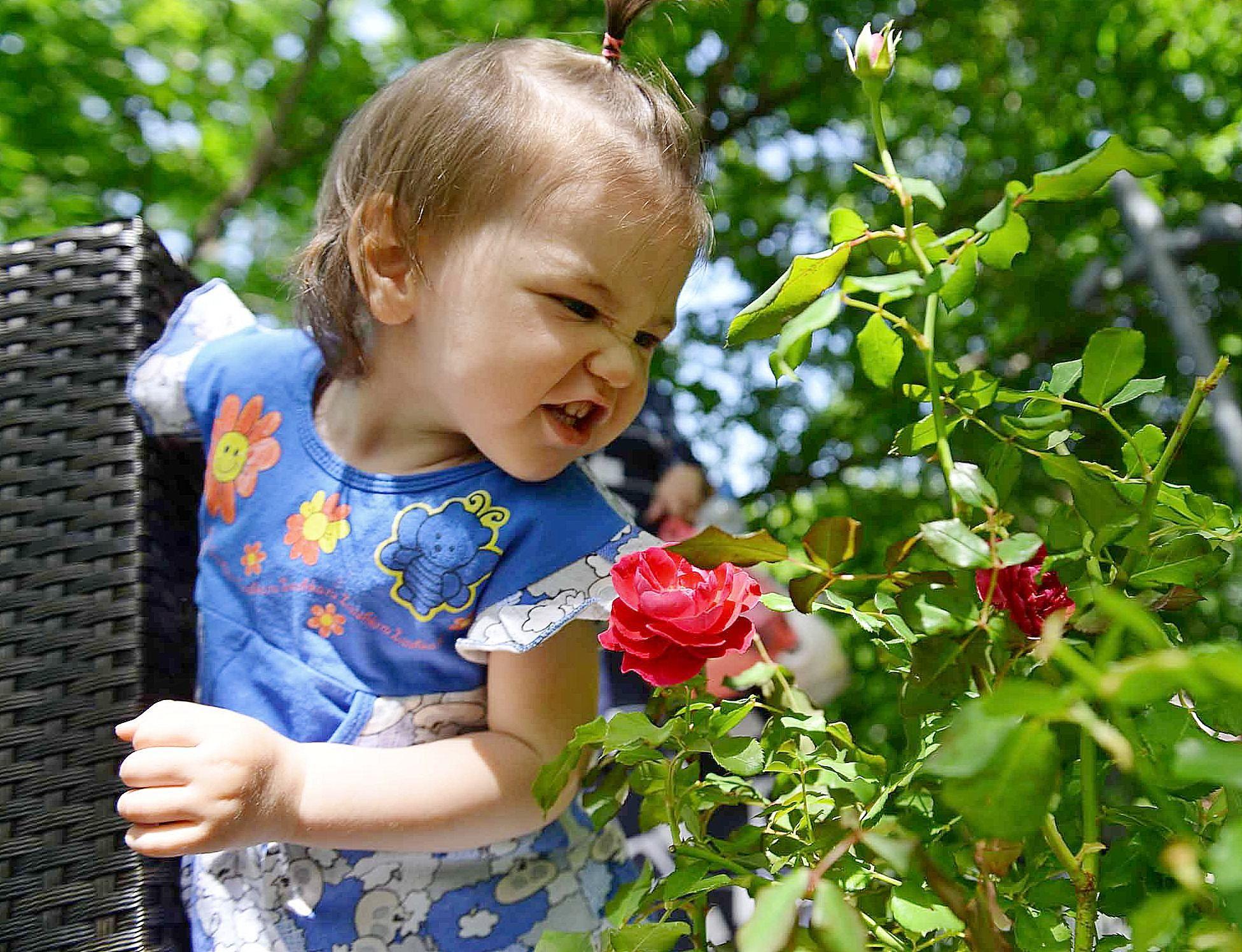 Гостей ВДНХ пригласили полюбоваться цветущими розами