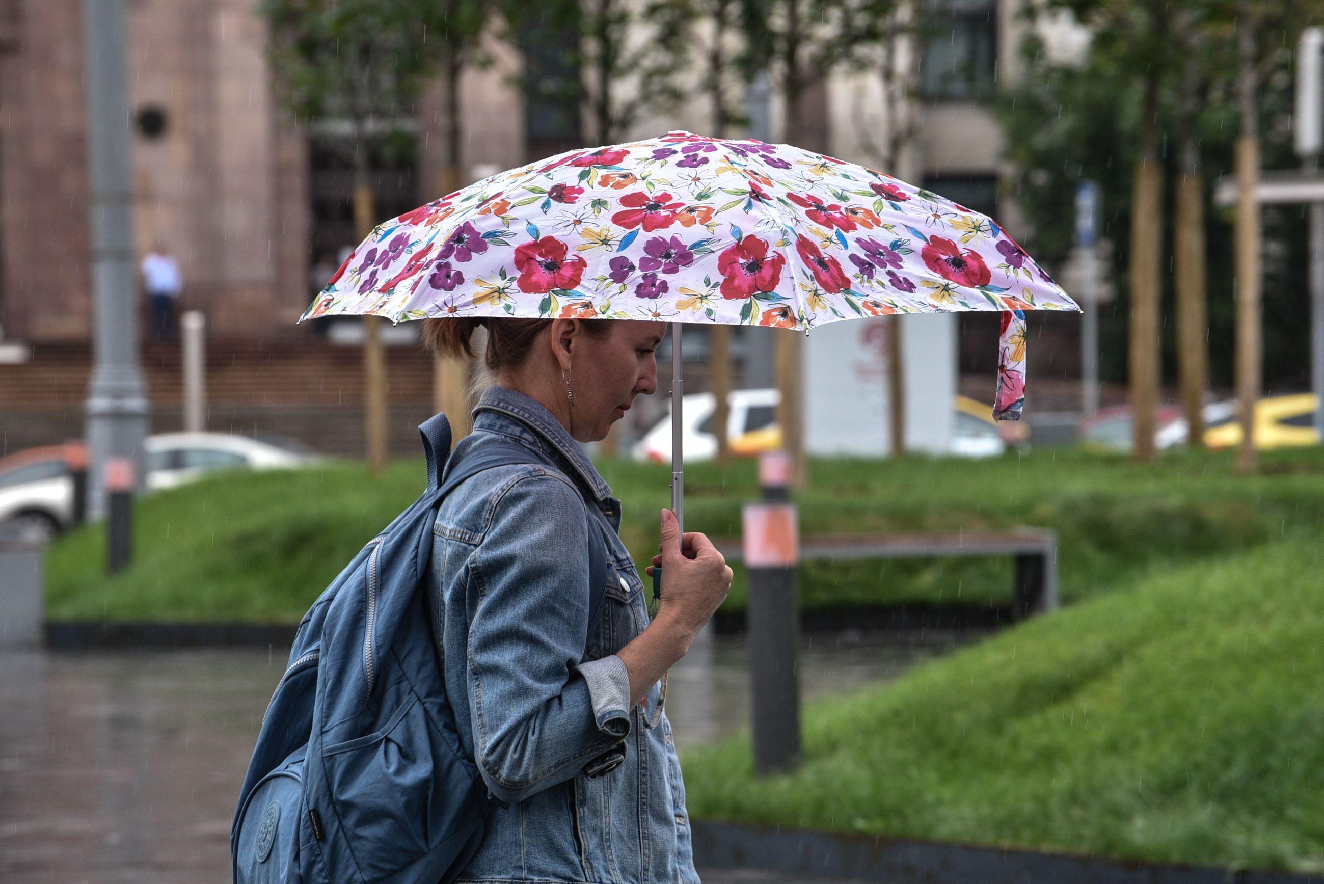Жителей Москвы ждет дождливая погода в День России