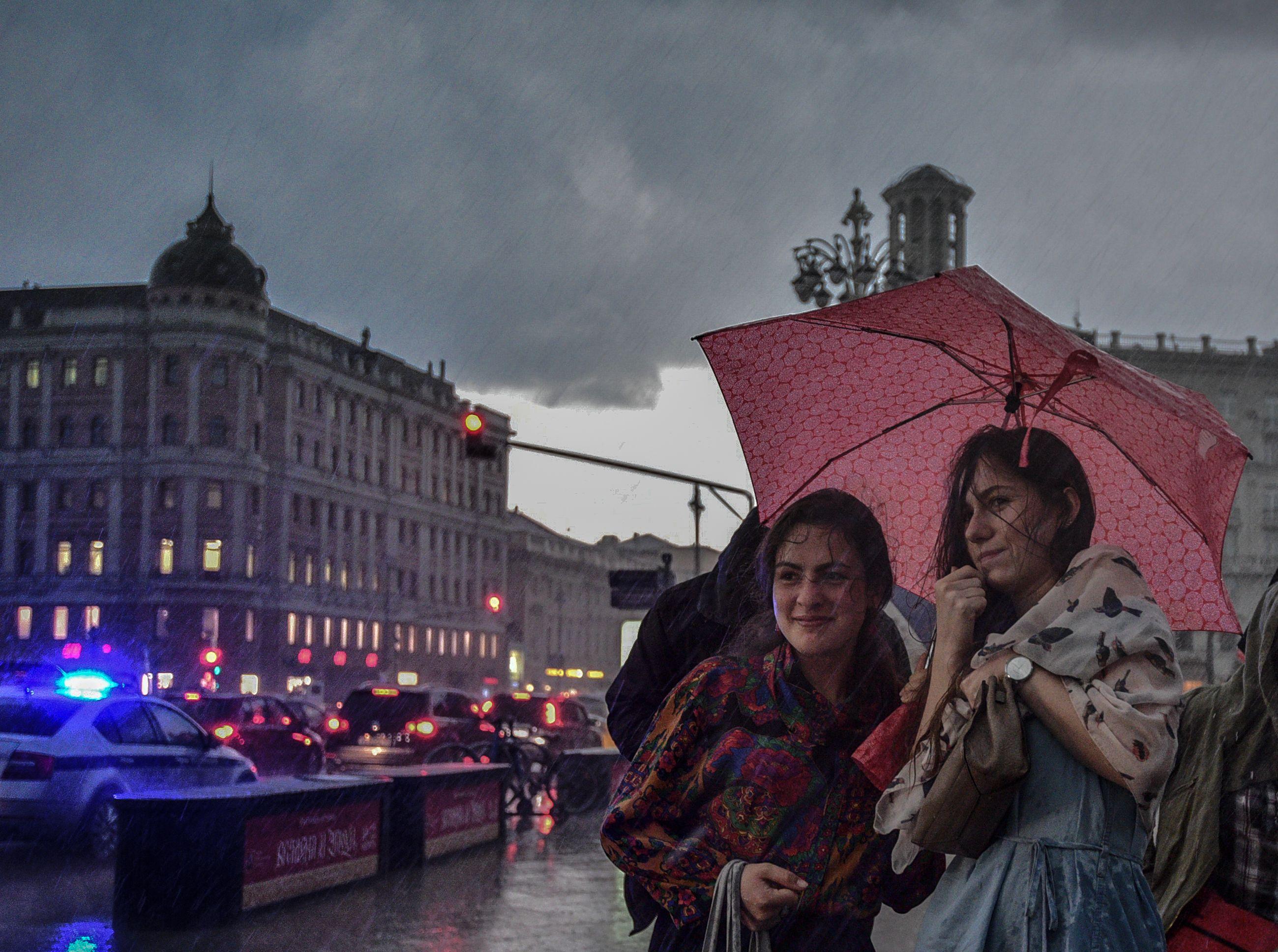 Москвичей предупредили о сильном ветре и дожде