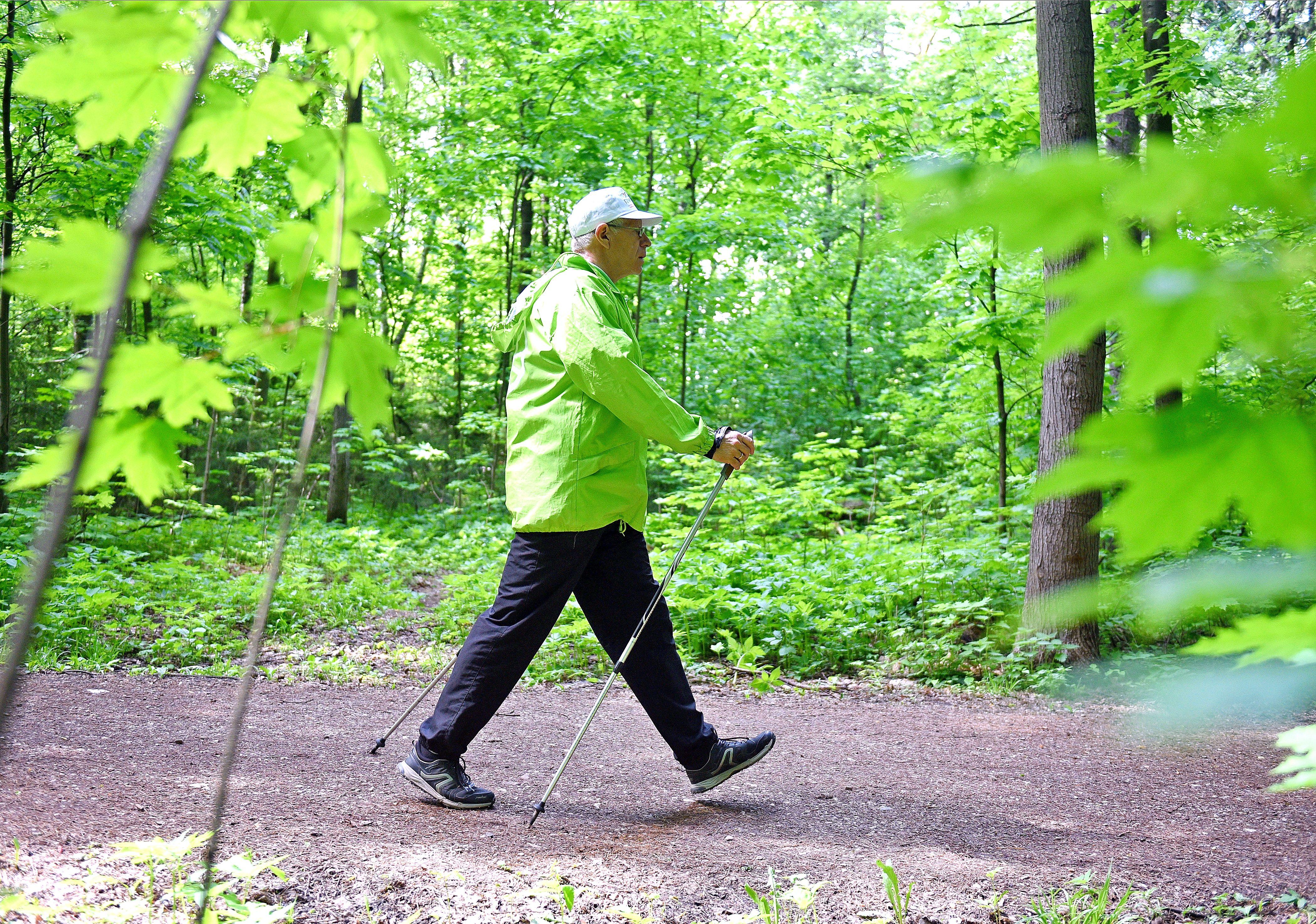 Депутат Мосгордумы Титов: После санитарной вырубки в Зеленограде появится молодой лес