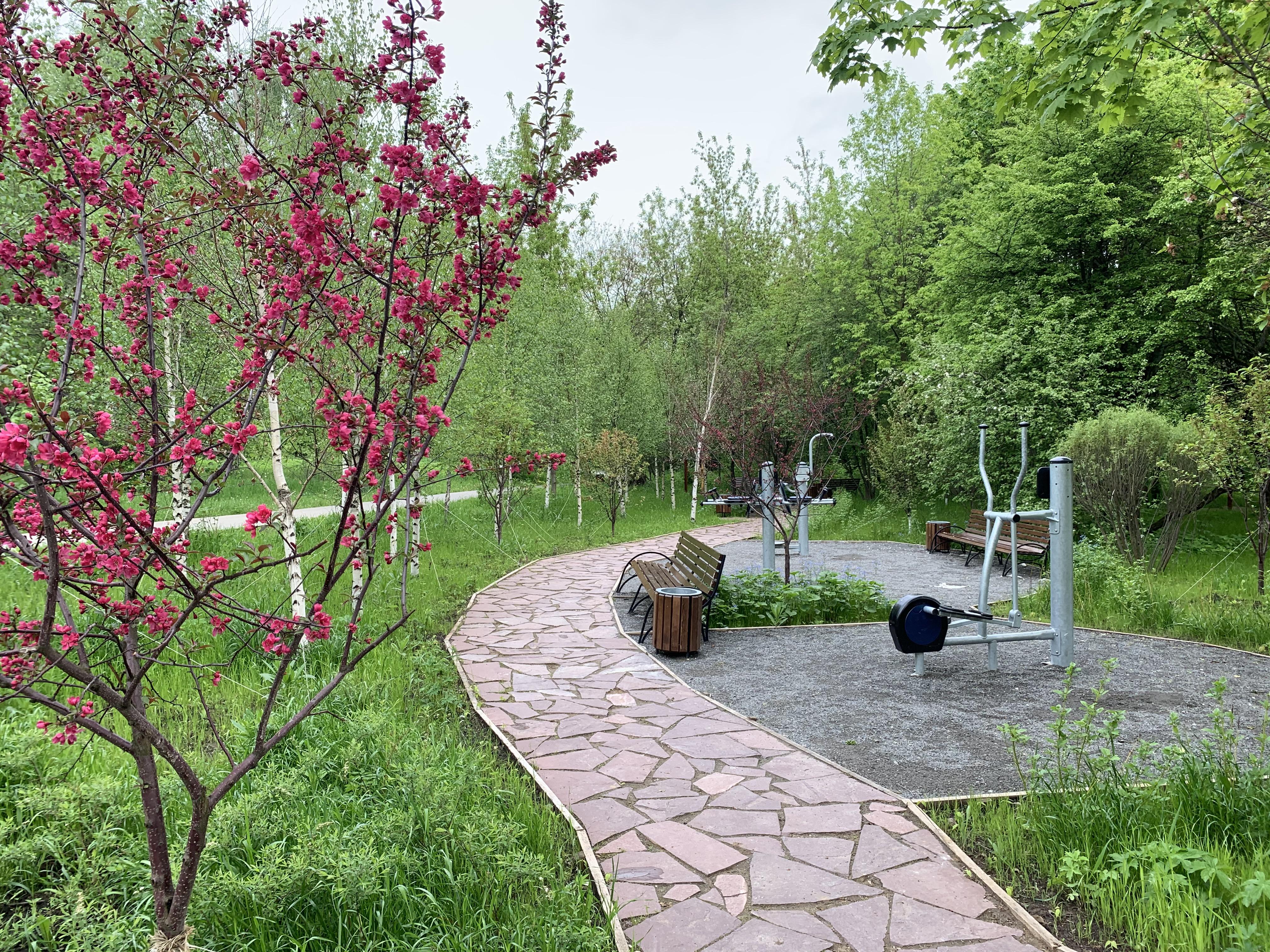 Отдых и природа: горожанам рассказали о «Садах здоровья»