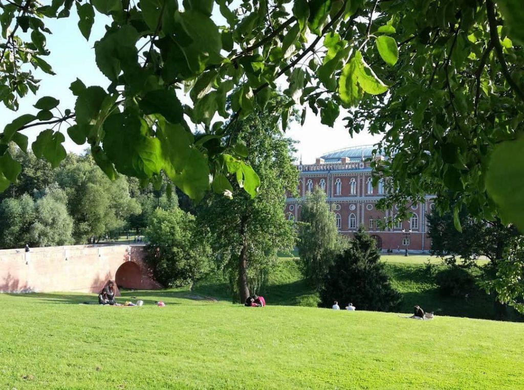 Грузовик в поле и лебеди: народный корреспондент рассказал о летнем дне в «Царицыне». Фото: пользователь @kalininalexander68 в Instagram