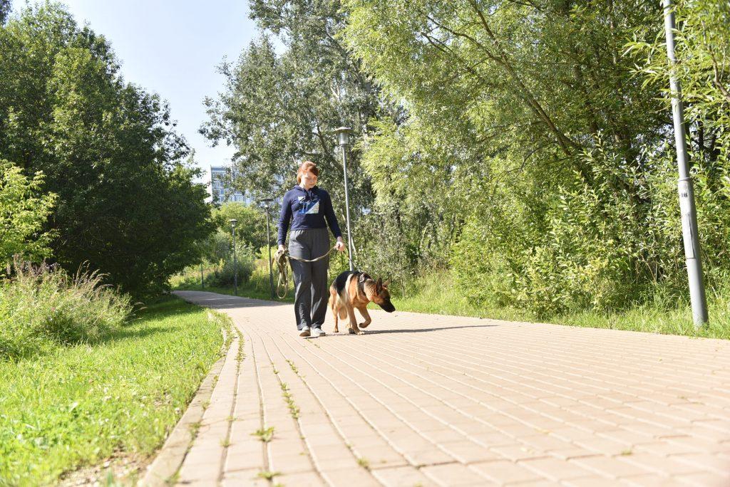28 июля 2020 года.На Шмелевке не хватает собачьей площадки, считает Дарья Храмова.Она часто гуляет здесь с овчаркой Мирой. Фото: Пелагия Замятина