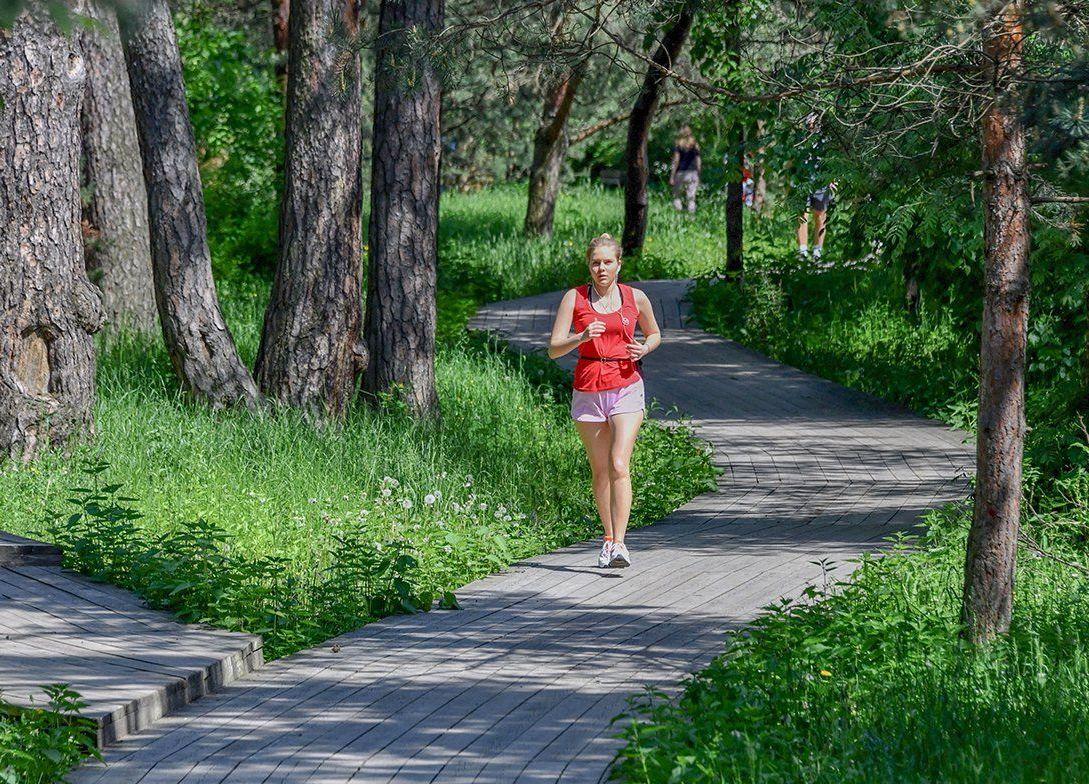Пробежки по живописным маршрутам проводят в двух парках юга