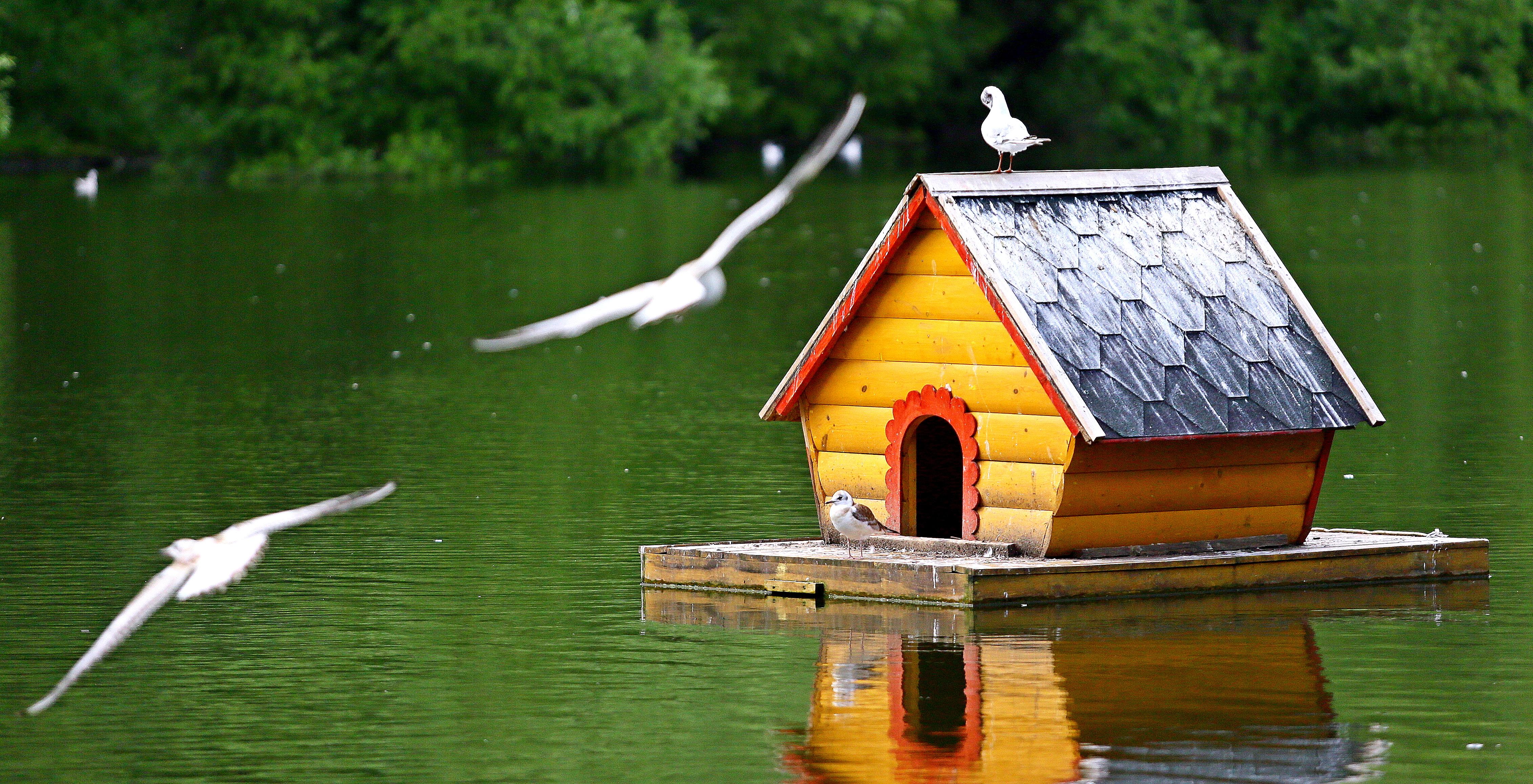 Москва реконструирует еще 15 прудов до 2021 года