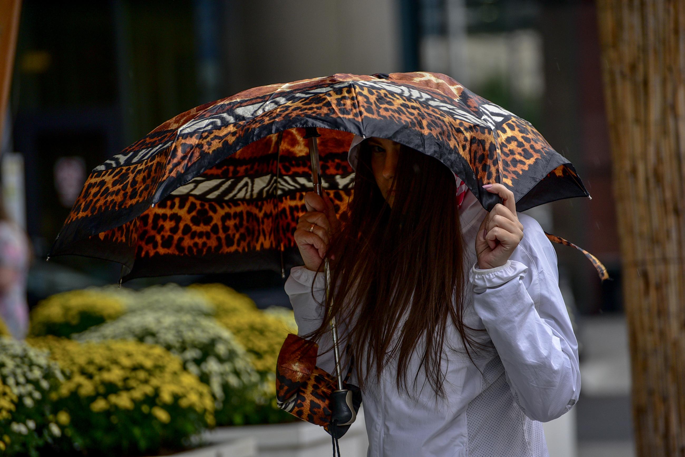 Дождливая погода ожидается в Москве во вторник