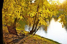 Погода в сентябре радует горожан. Фото: Пелагия Замятина