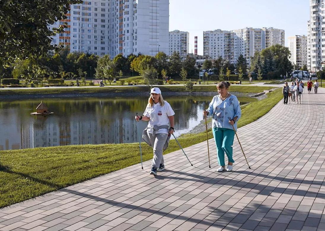 Москвичи старшего поколения займутся скандинавской ходьбой в Бирюлевском дендропарке