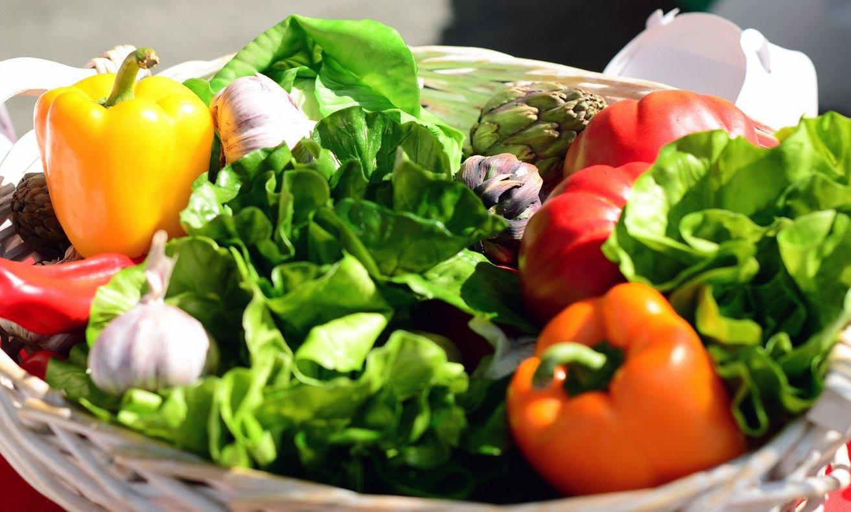 Москвичам расскажут о здоровом питании в «Ангаре»