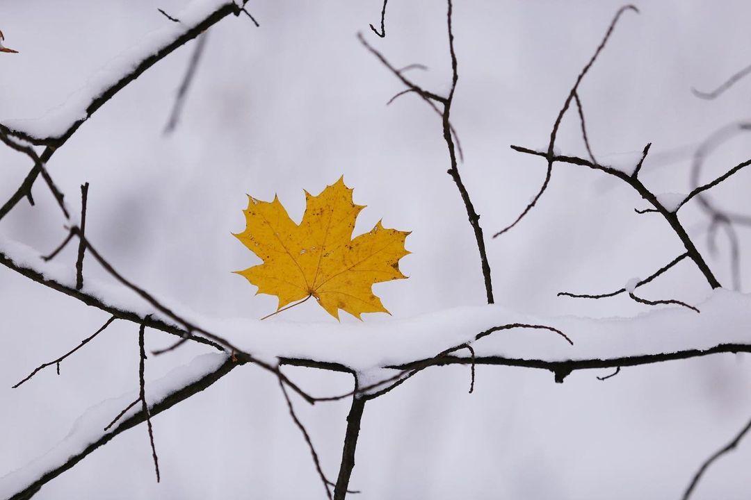 Последний день осени