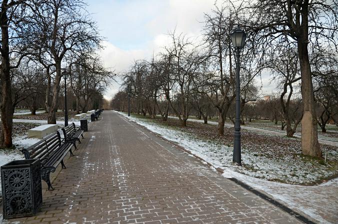 Москвичей пригласили на кросс в парк «Сосенки»