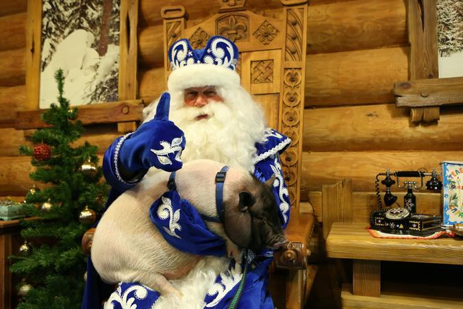 Почта Деда Мороза заработала в «Коломенском»