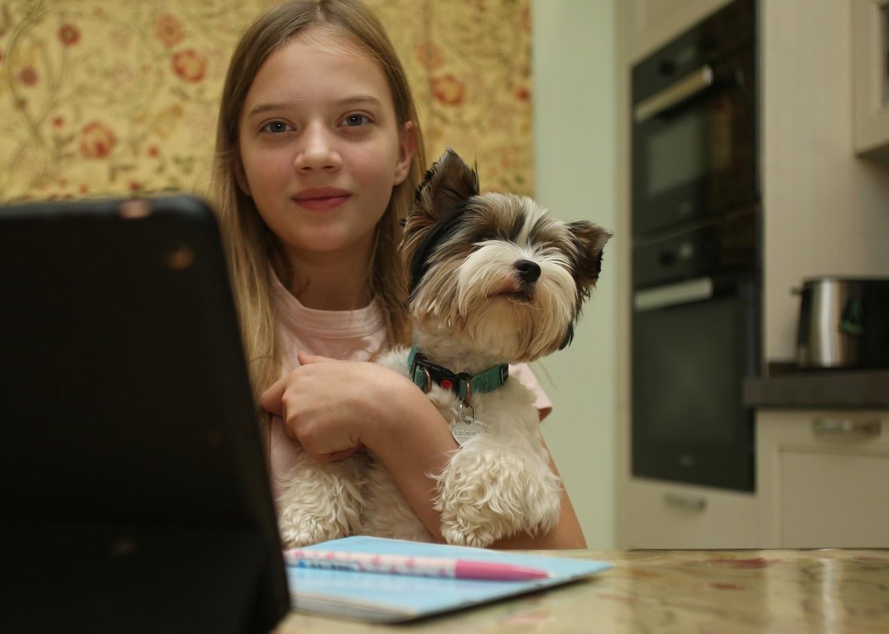 Онлайн-конкурс для школьников стартовал в Москве