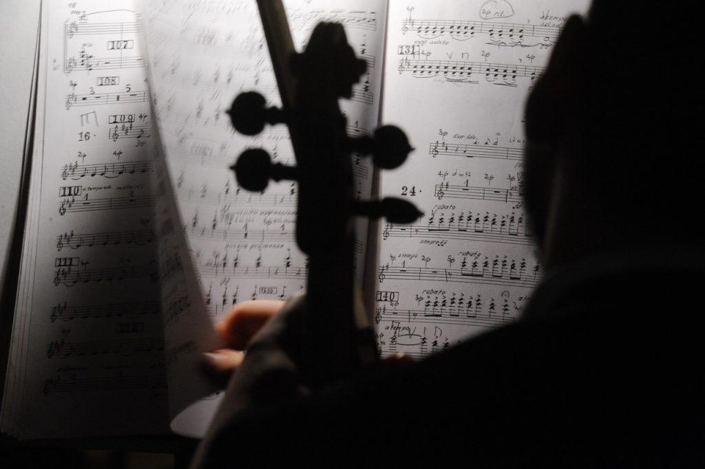 Посольские вечера: москвичей пригласили на онлайн-концерт классической музыки в «Царицыно». Фото: Александр Кожохин, «Вечерняя Москва»