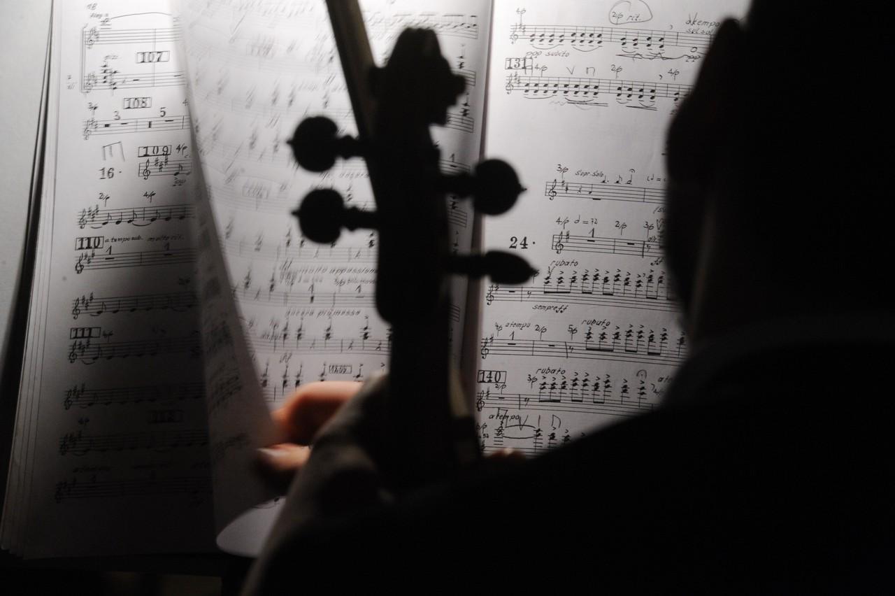 Посольские вечера: москвичей пригласили на онлайн-концерт классической музыки в «Царицыно»