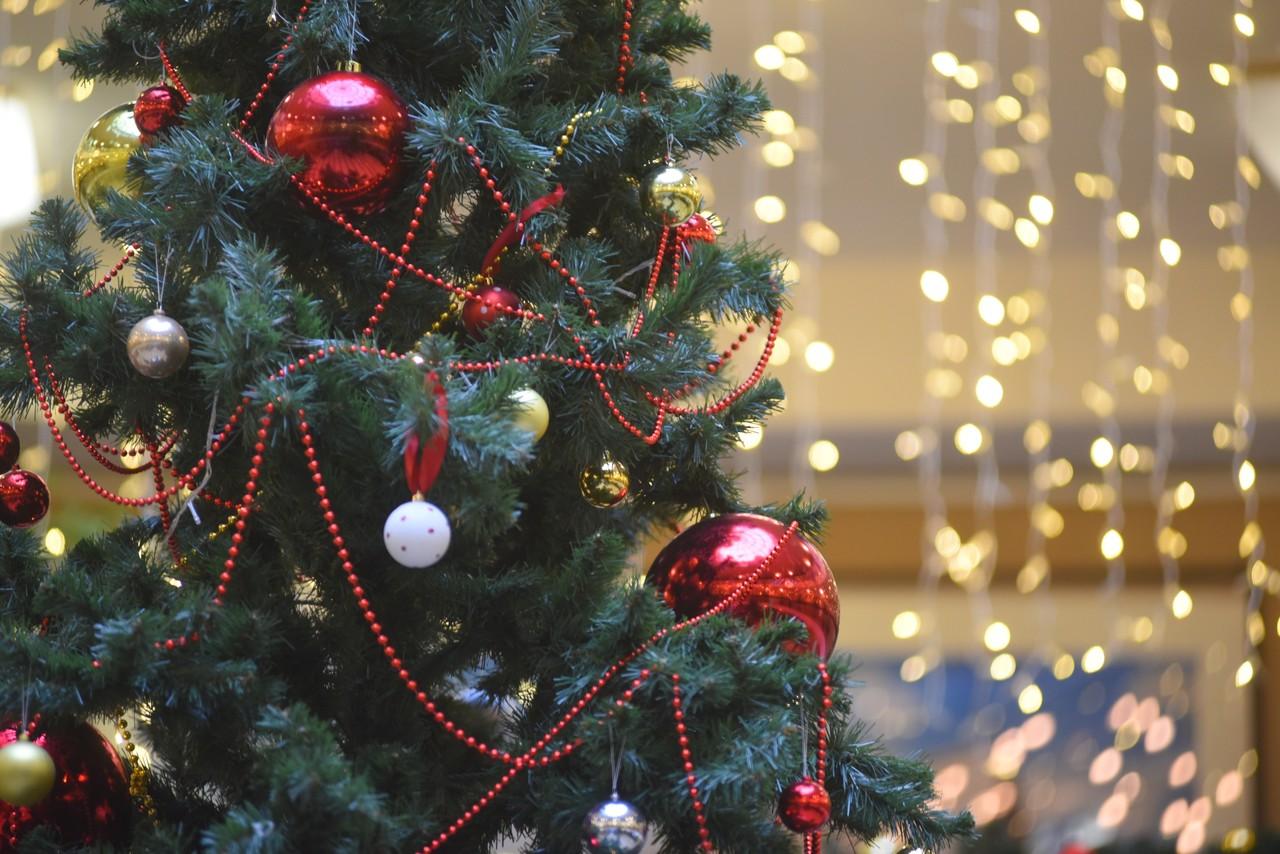 Акцию «Добрая елка» запустили в детских больницах Москвы