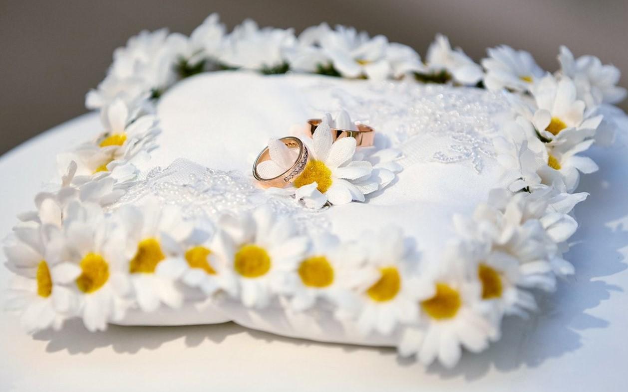Москвичи смогут зарегистрировать брак в «Коломенском» и «Царицыне»