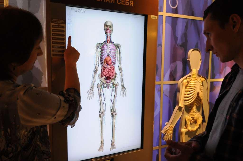 Код жизни: москвичи пройдут виртуальный квест от сотрудников Дарвиновского музея