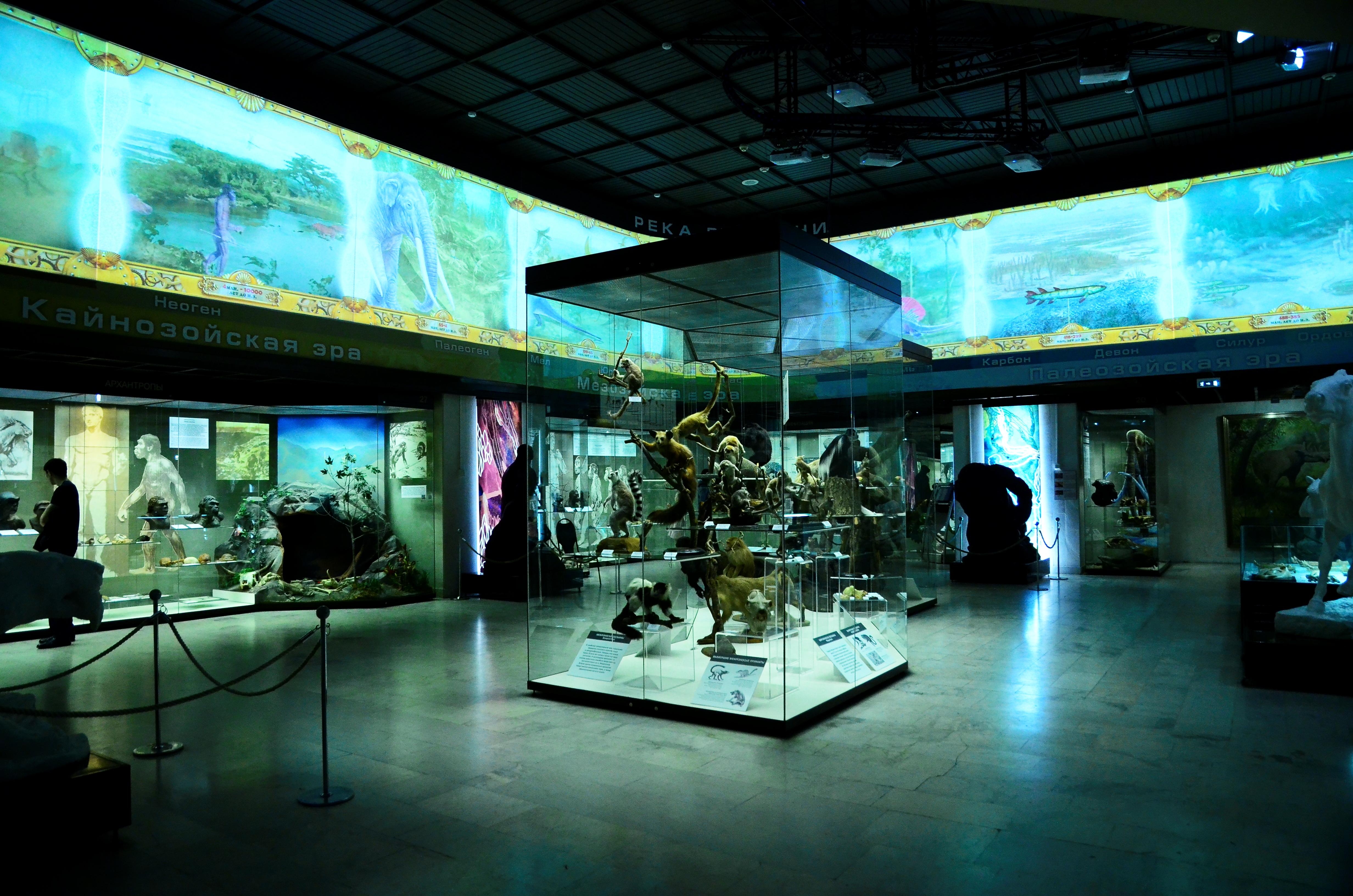Возвращение: сотрудники Дарвиновского музея запланировали крупные премьеры в 2021 году