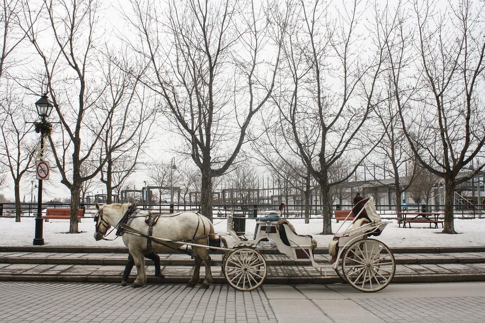 Представление по мотивам сказки «Снежная королева» подготовили в «Донском»