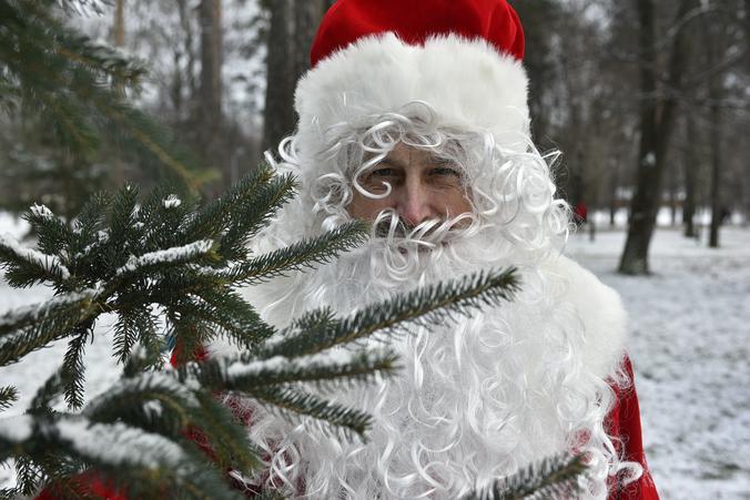 Сказки Дедушки Мороза: праздничную программу проведут сотрудники центра «Садовники»