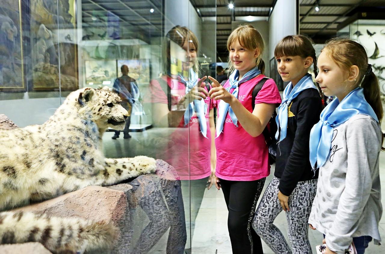Занятия для детей возобновили в Дарвиновском музее