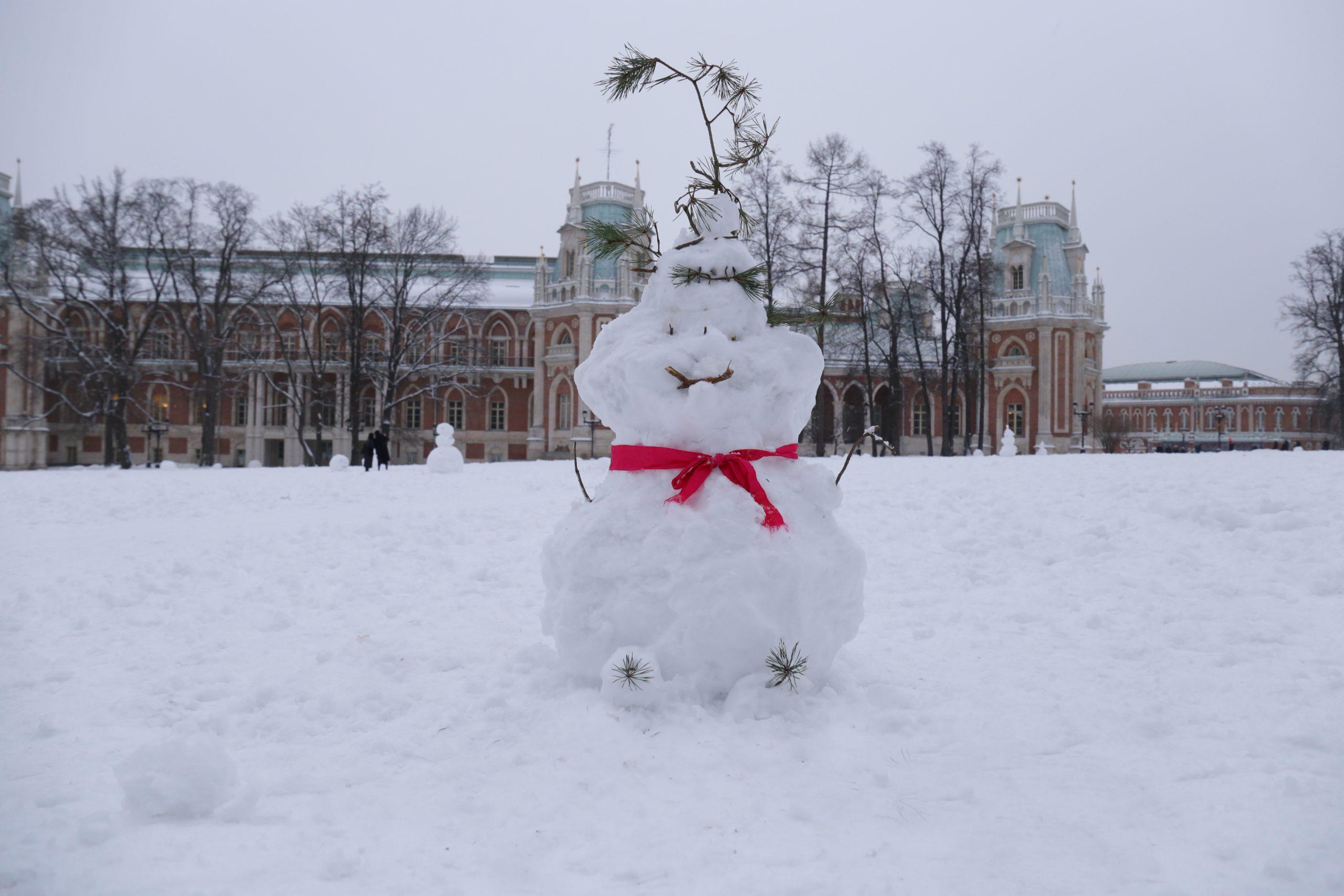 Фотофакт: Снежное творчество