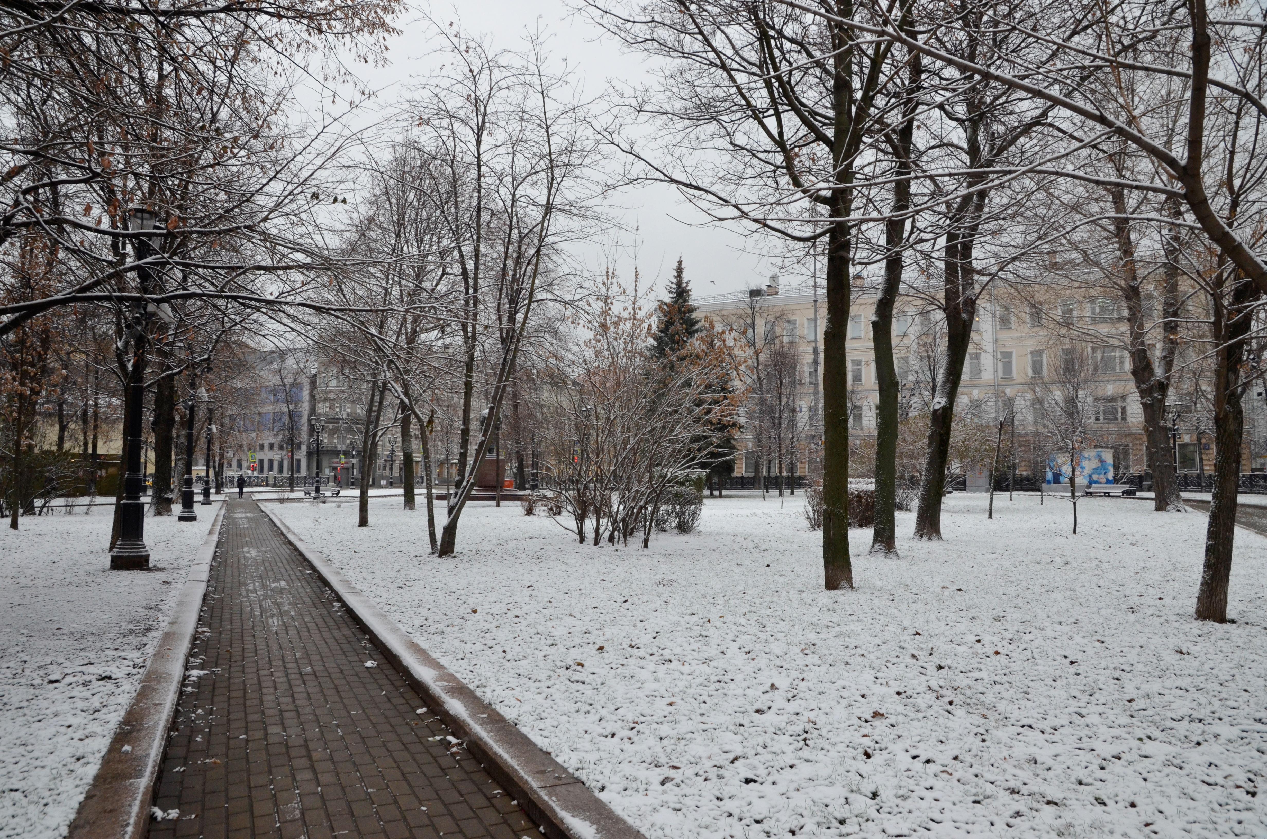 Синоптики рассказали о температурном режиме столичного региона 4 января