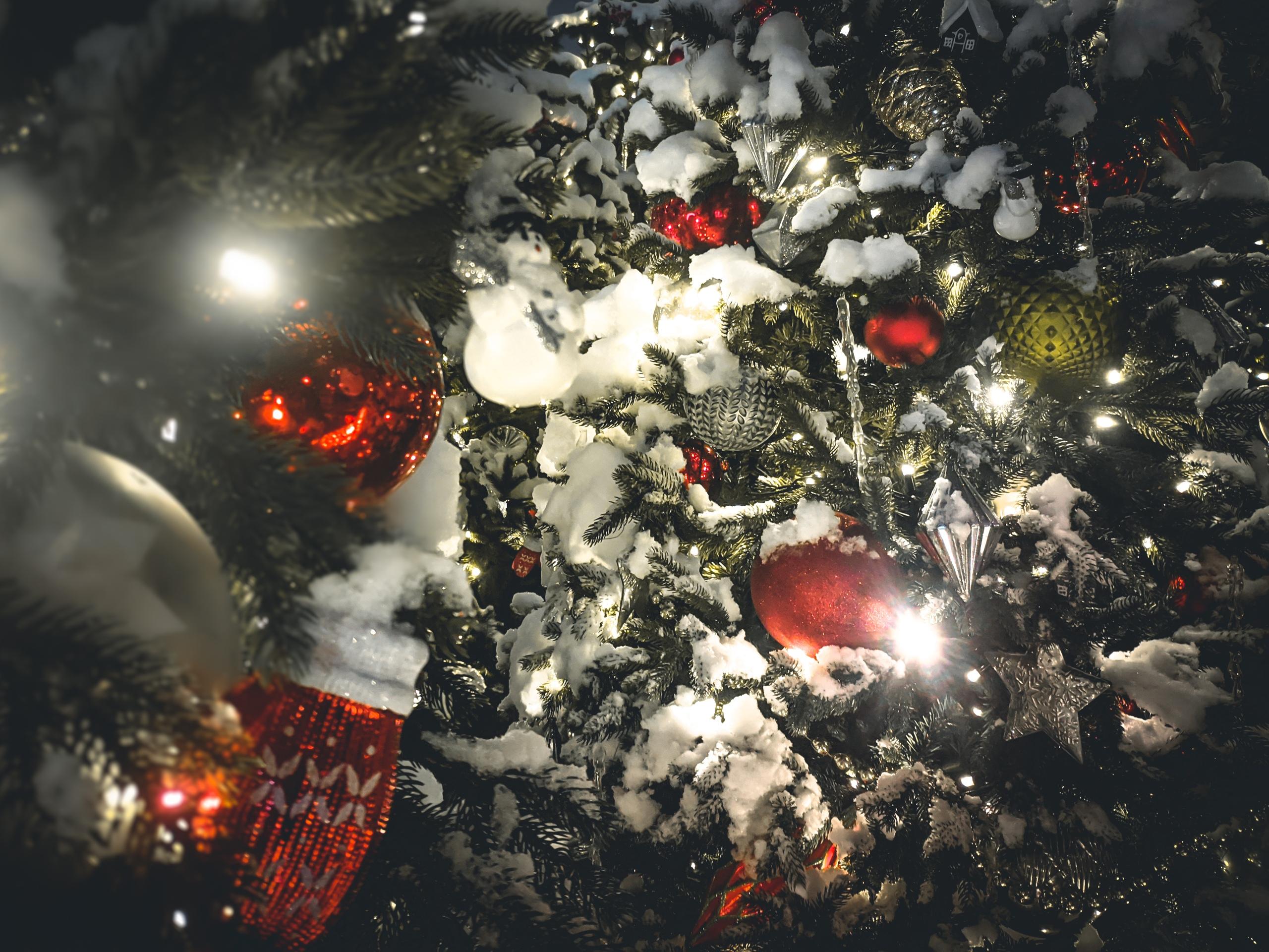 Новогоднюю фотовыставку представили в «Авангарде»