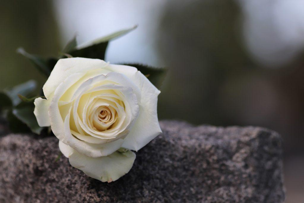 Памятники на Даниловском кладбище отреставрировали. Фото: pixabay.com