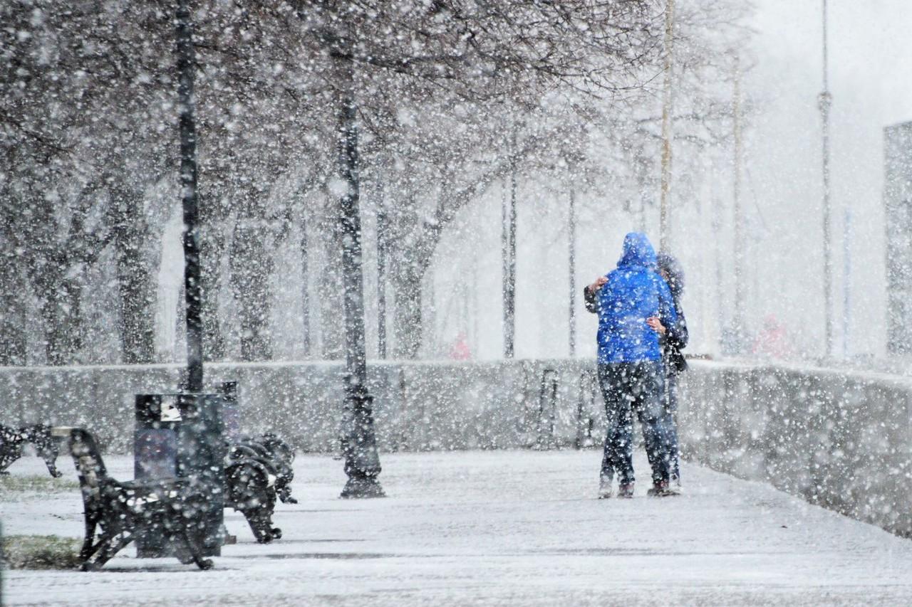 Фотовыставка о любви открылась в парках Москвы
