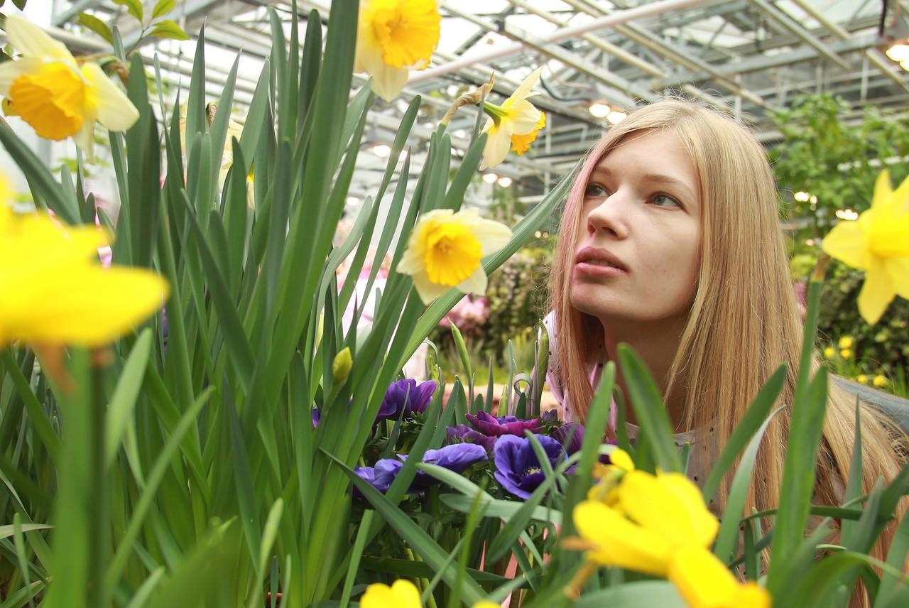 Около десяти тысяч растений расцветет в «Аптекарском огороде»