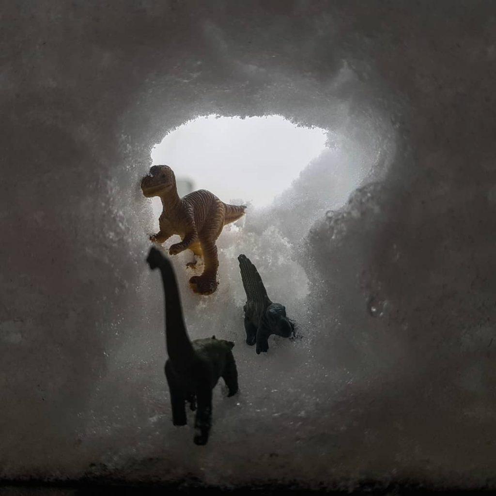 Снежные истории: народный корреспондент пофантазировал на тему аномальных осадков. Фото: Анастасия Зыкова