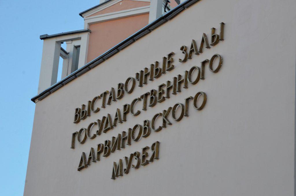 Лекция пройдет онлайн. Фото: Анна Быкова