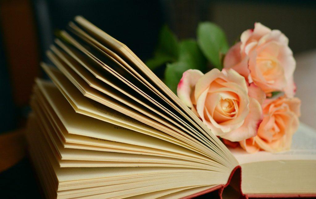 Соседний стеллаж: библиотеки юга представили новый выпуск подкаста. Фото: pixabay.com