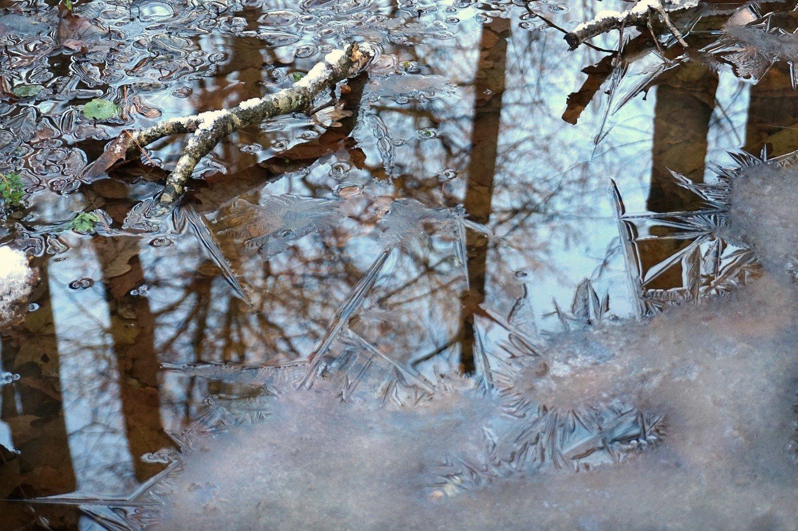 День водно-болотных угодий: жителям юга рассказали о празднике