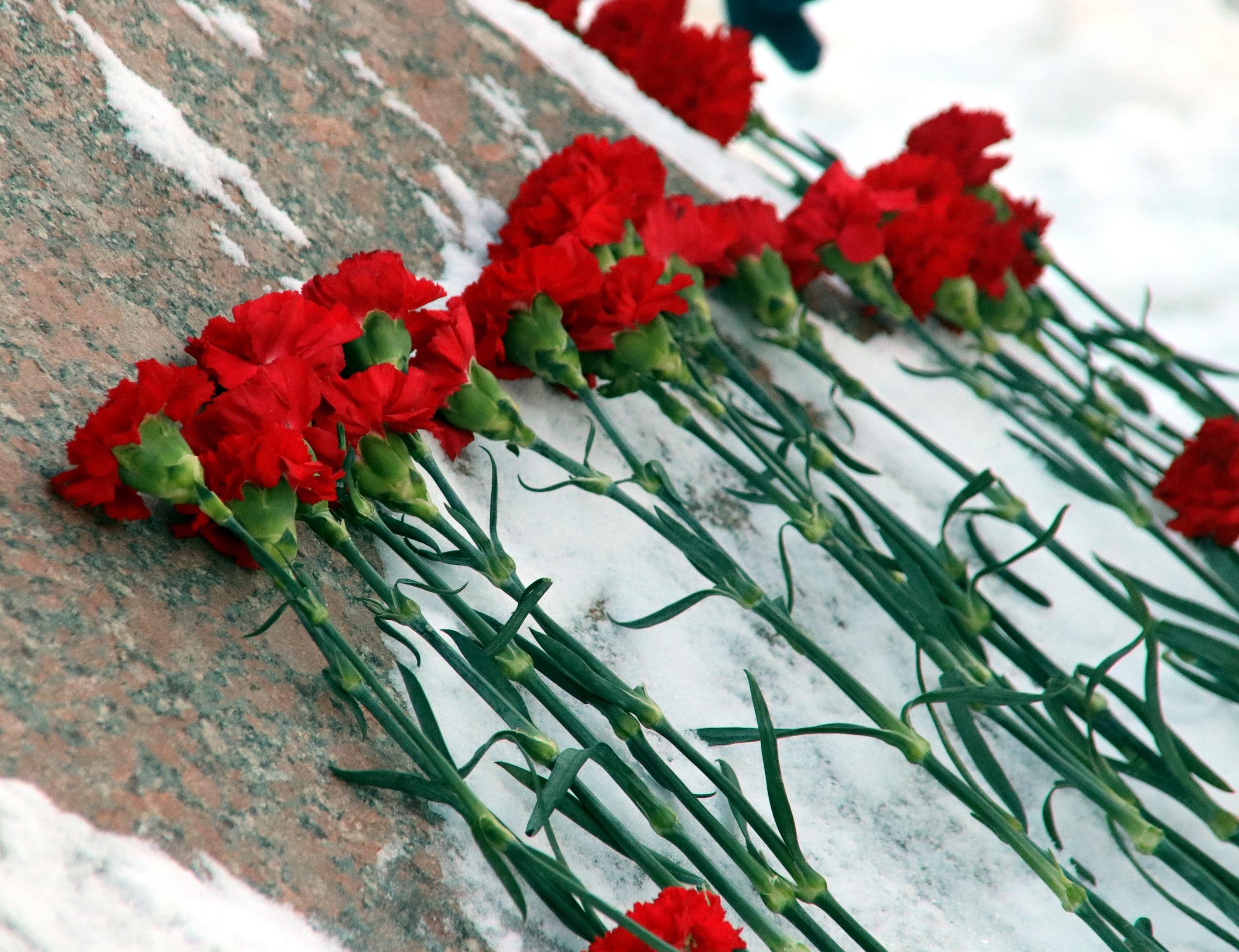 События Сталинградской битвы вспомнили в Орехове-Борисове Южном