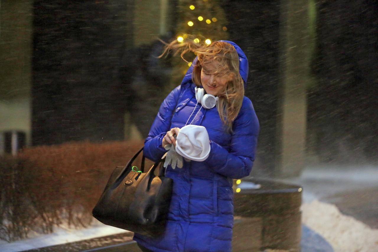 Гидрометцентр ввел «желтый» уровень погодной опасности в Москве из-за ветра