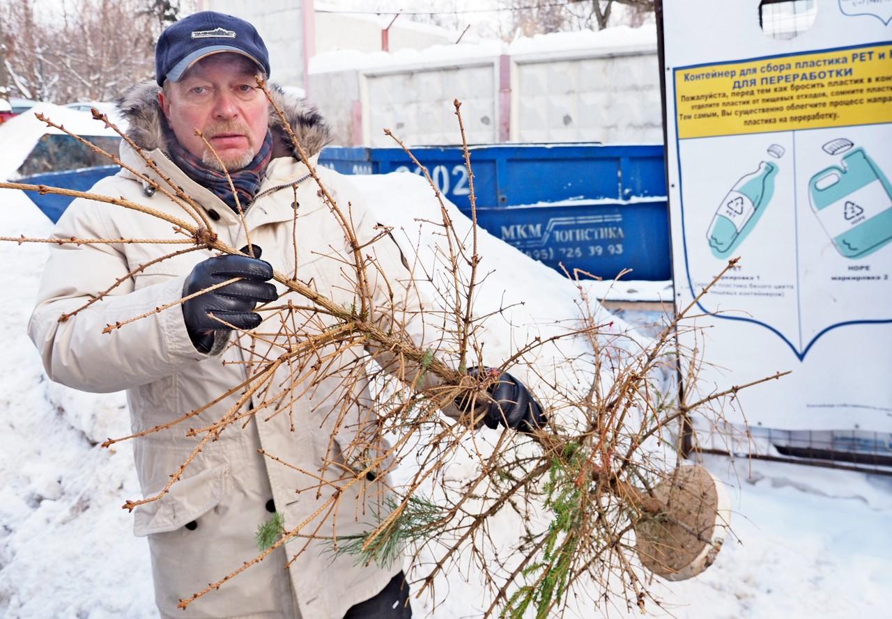 Горожане сдали на переработку более 44,5 тысячи новогодних деревьев