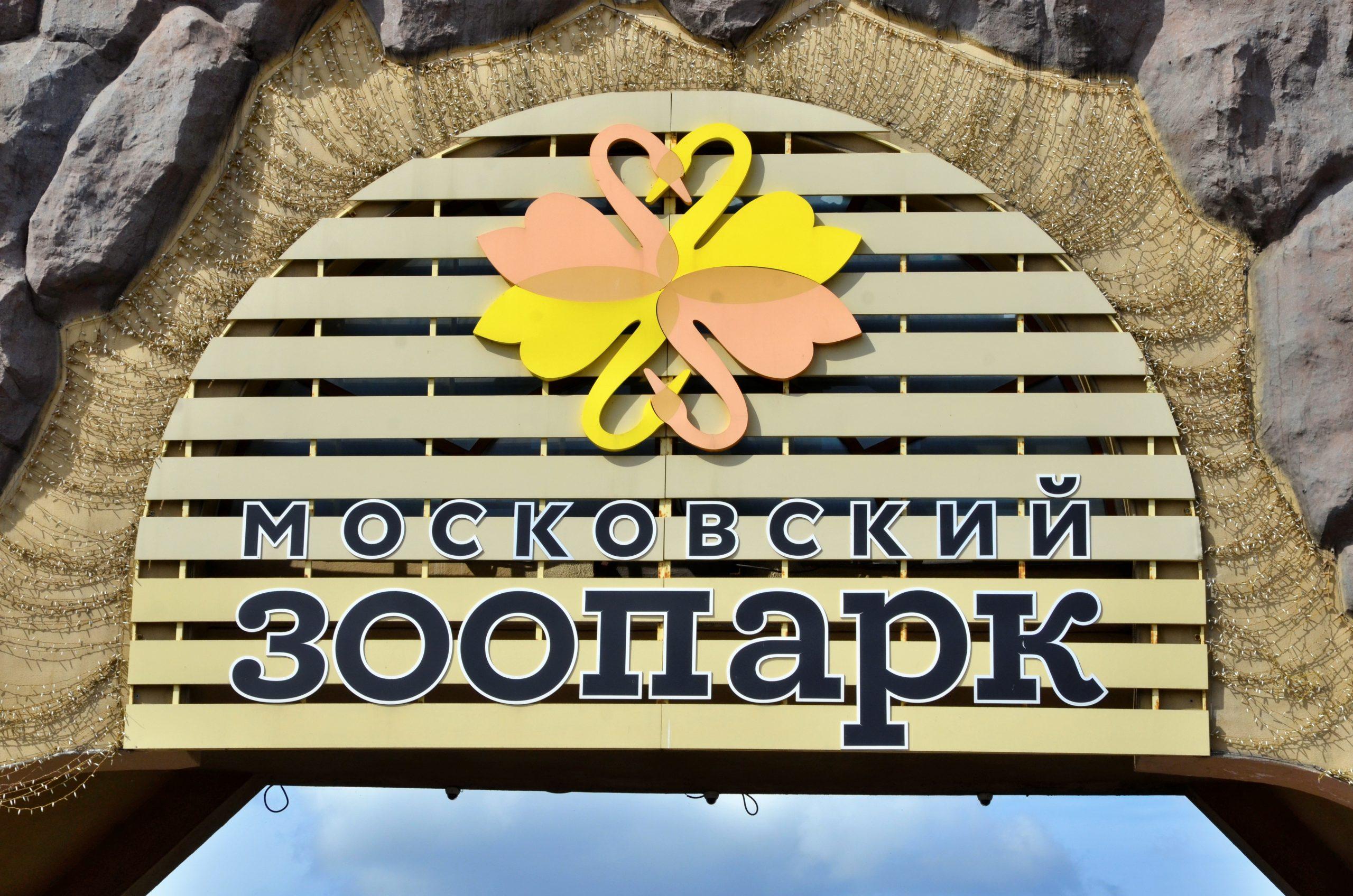 Сурки Московского зоопарка вышли из спячки