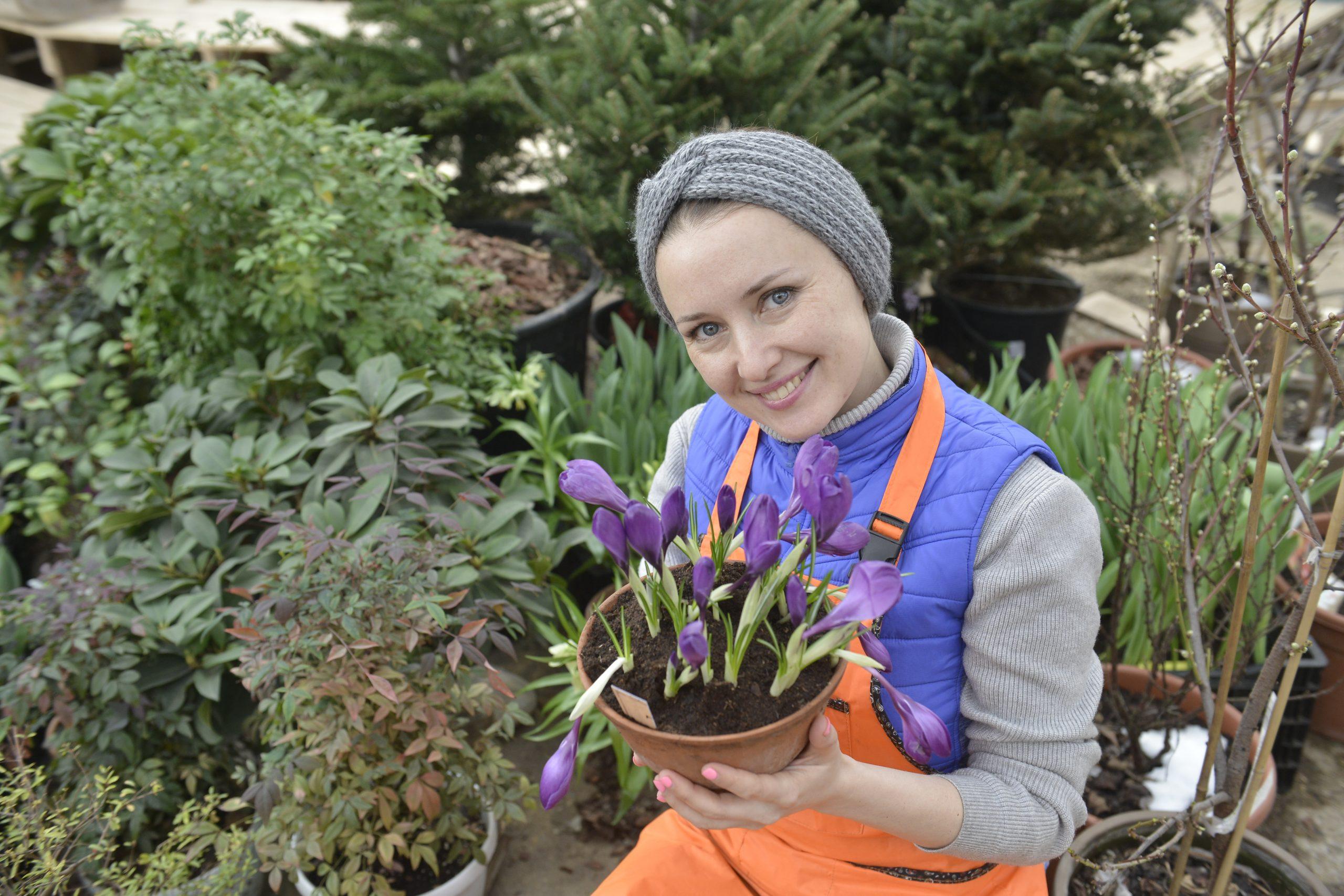 Сад и огород: горожане узнают о правилах ухода за земельным участком