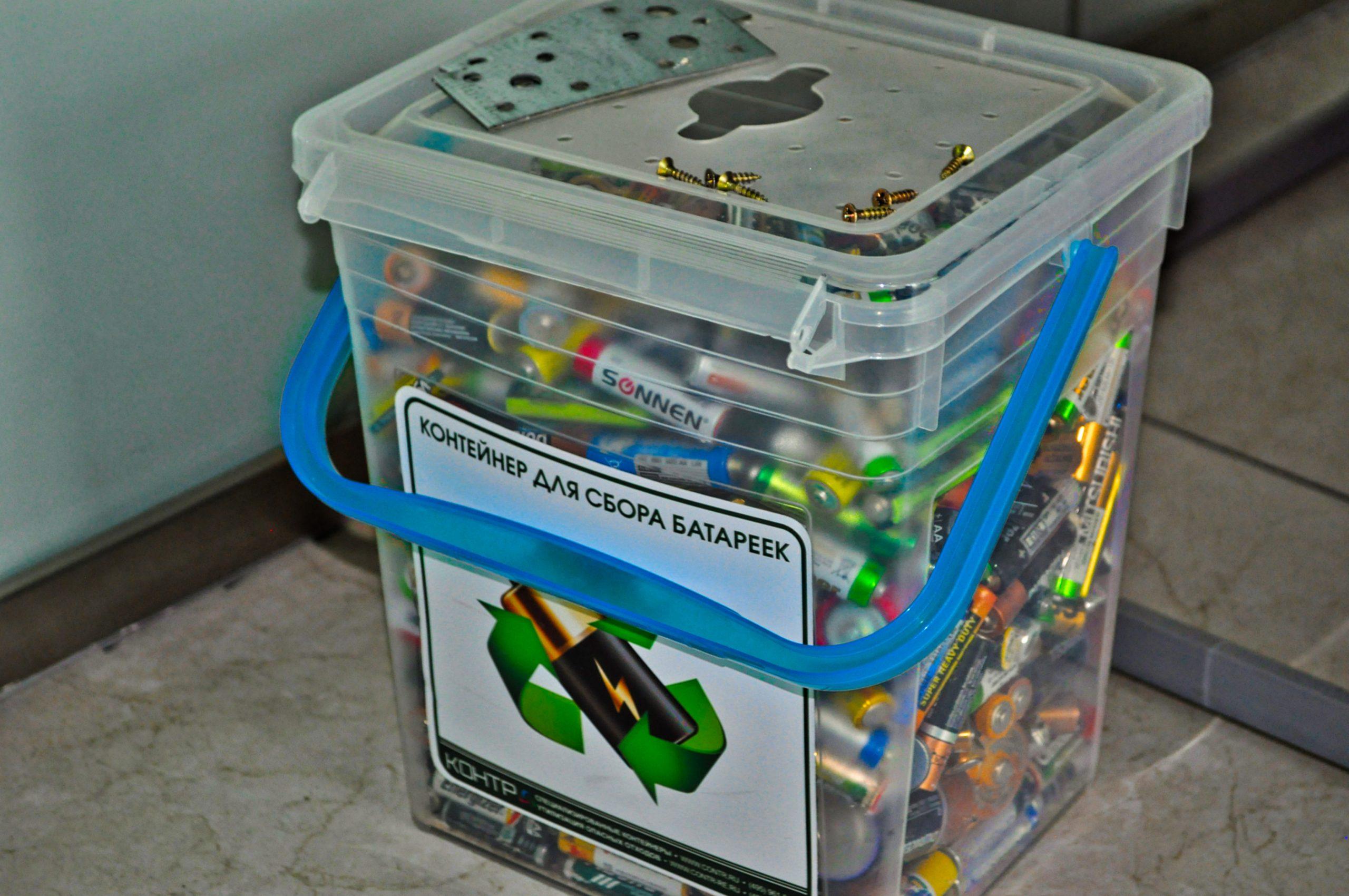 Зеленый город: в Орехове-Борисове Южном собрали 400 килограммов батареек на переработку