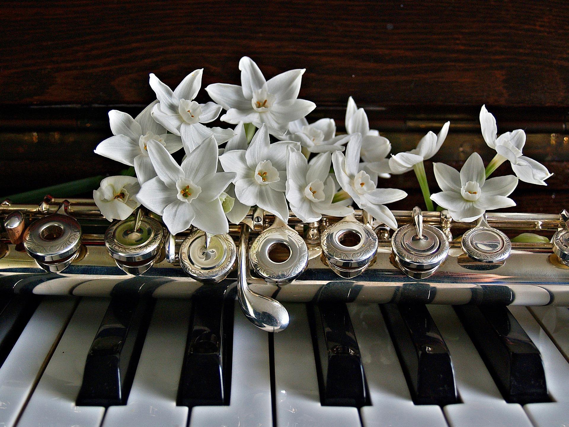 Музыка и романтика: москвичей пригласили на концерт классической музыки