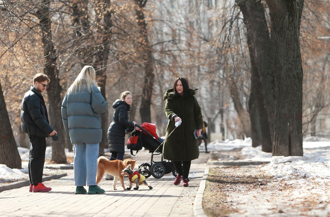 Воздух в Москве прогреется до плюс семи градусов в субботу