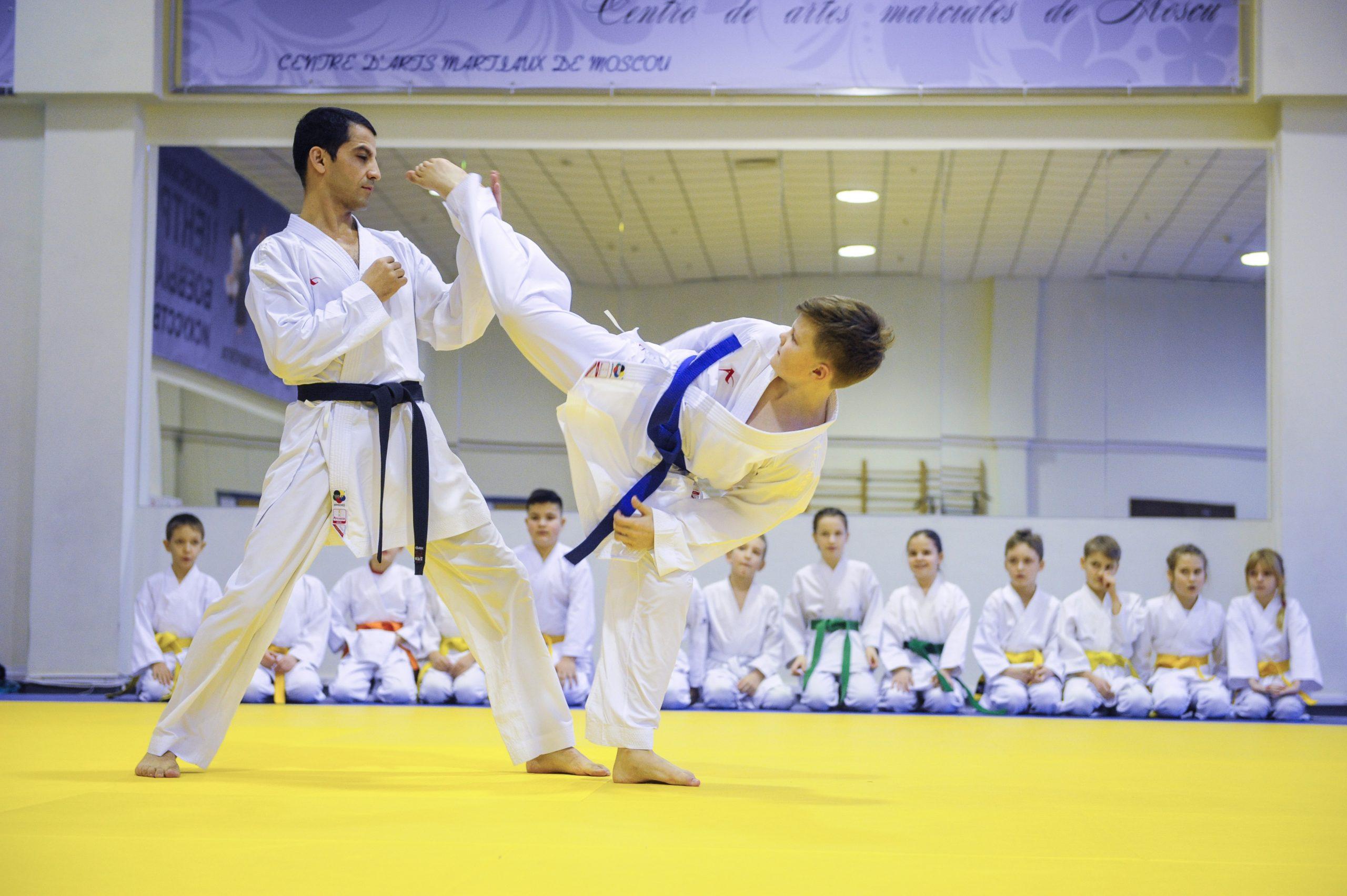 Соревнования по боевым искусствам проведут на юге Москвы