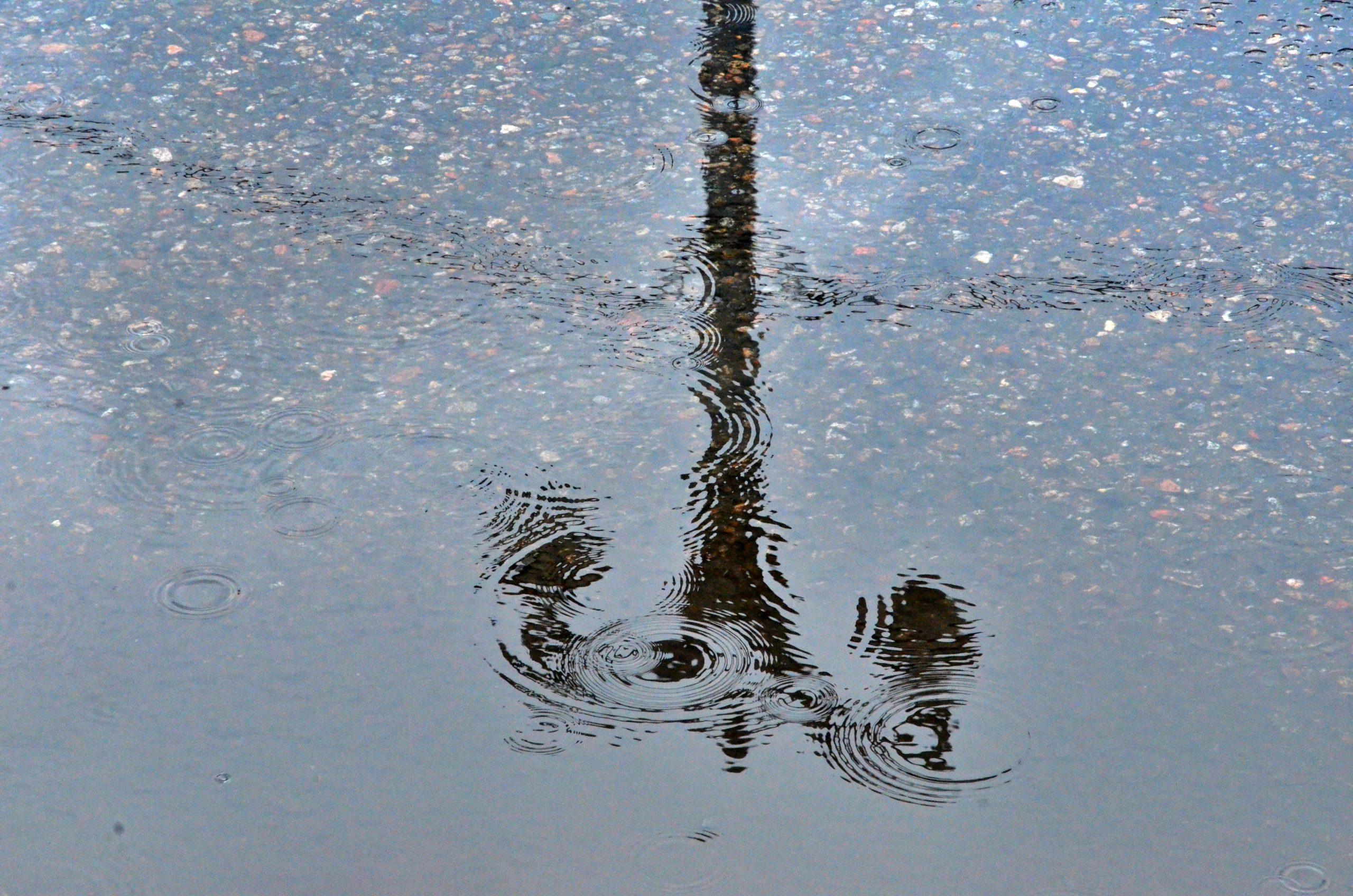 Небольшой дождь ожидает москвичей в воскресенье