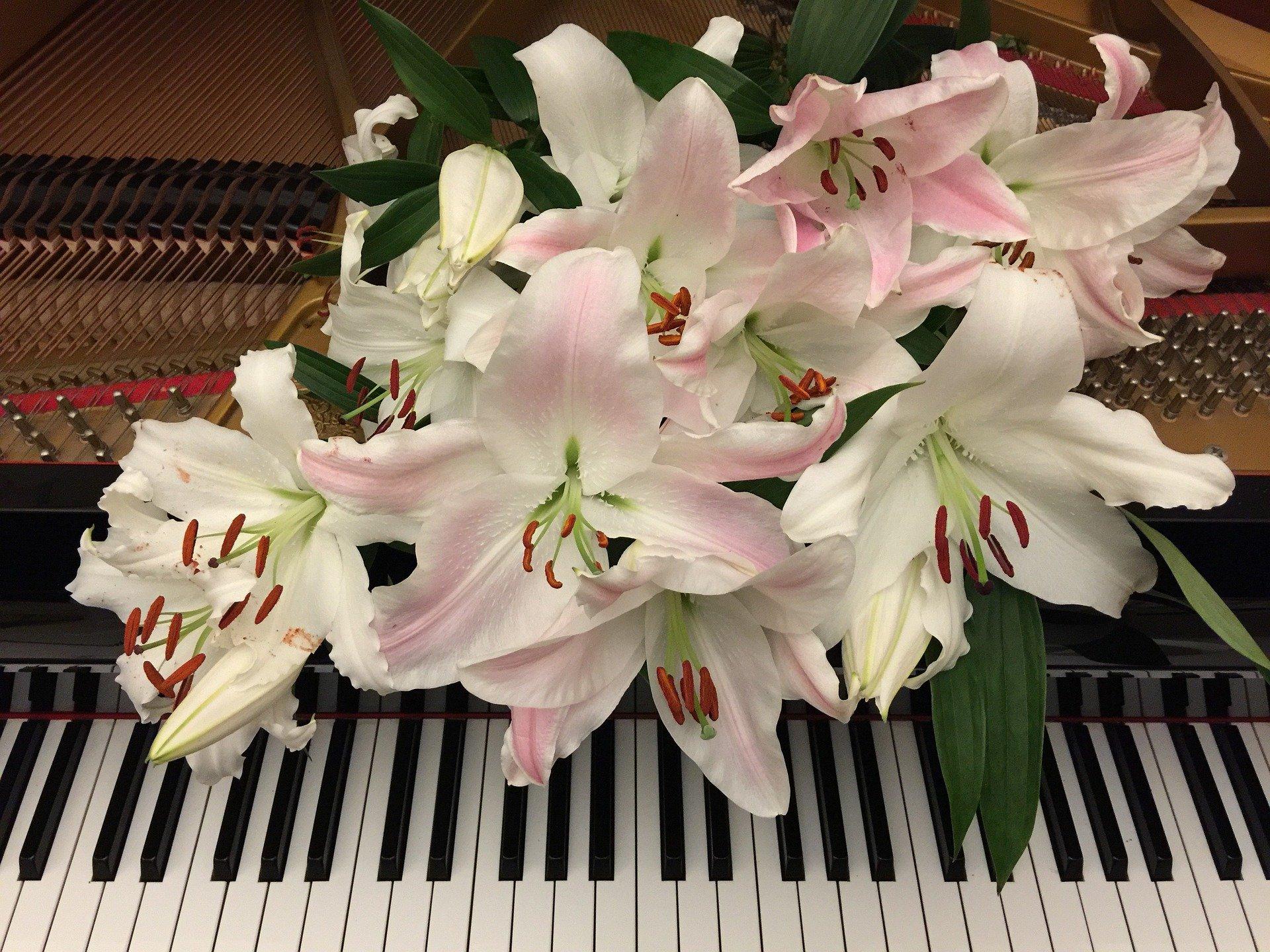 Бетховен в «Царицыне»: в музее организуют концерты инструментальной музыки