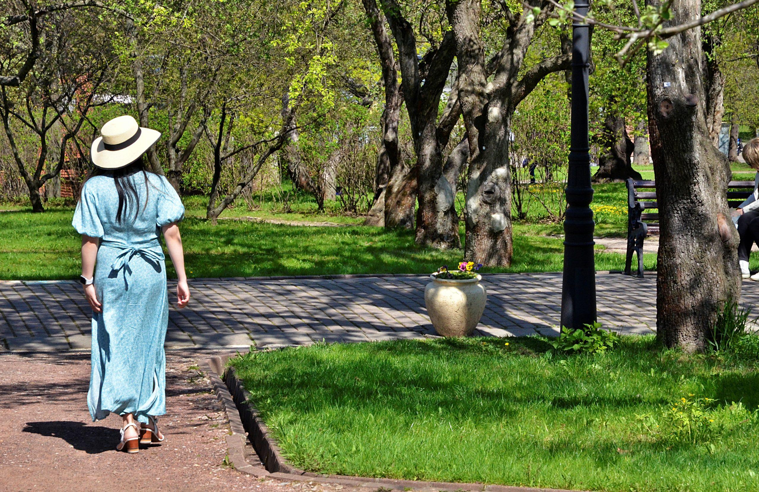 Столичные парки могут дополнительно обработать от клещей