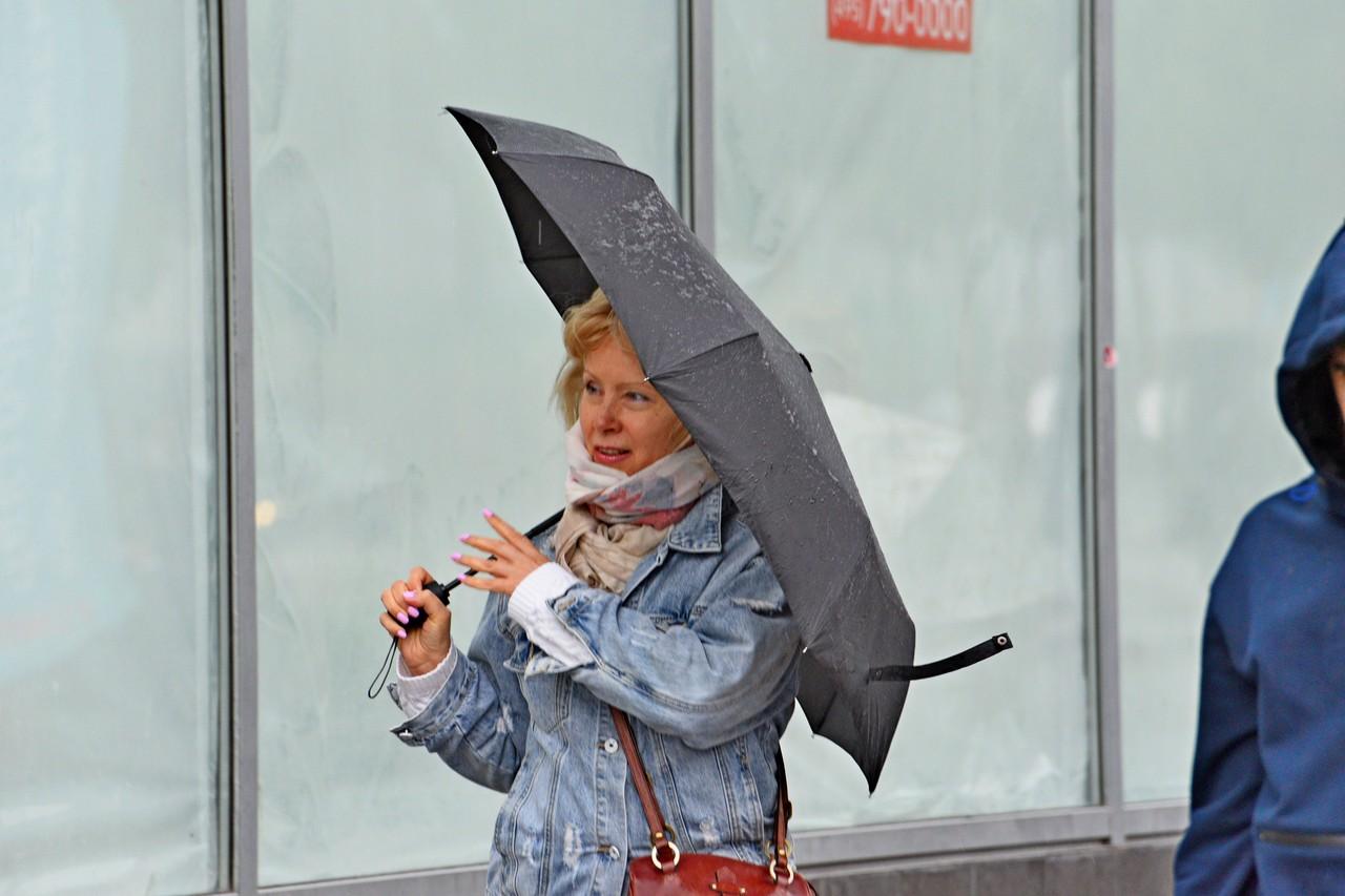 Москвичам пообещали сильные дожди на неделе