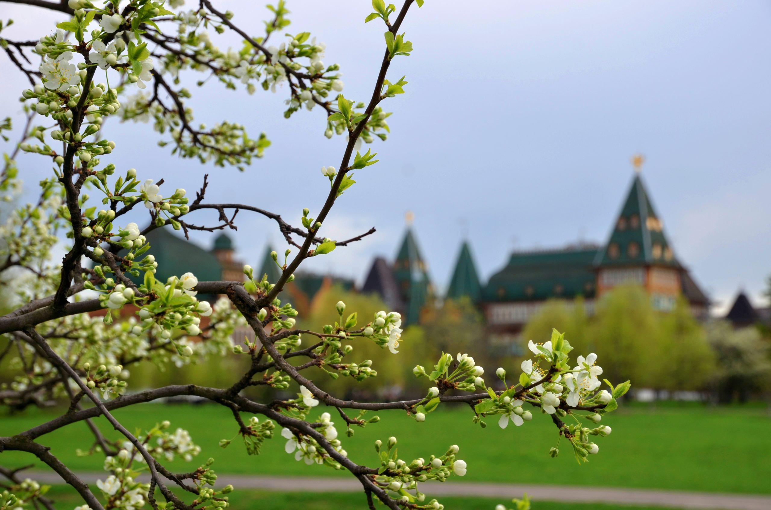 Конкурс экскурсоводов провели в Москве